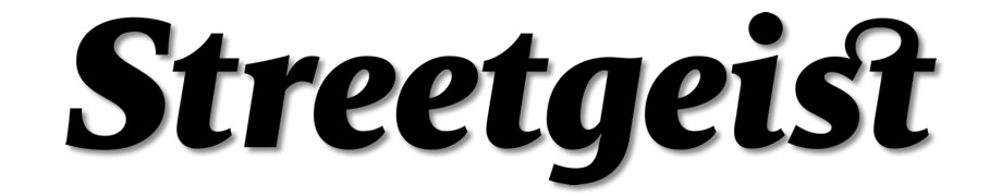 streetgeist street style logo